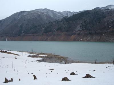 ブログ用H180409御母衣湖桜下東方向き.JPG
