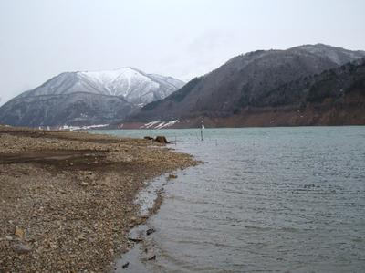 ブログ用H180409御母衣湖桜下1.JPG