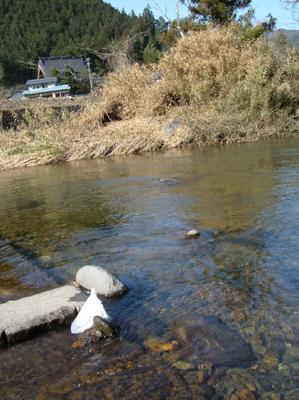 ブログ用H180409栗巣川ドリフターチェックの様子.JPG
