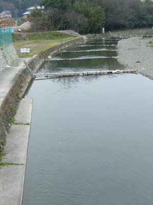 060401芥川管釣.JPG